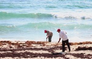 limpieza de playas2